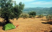 Rented tent (plus € 545,-)